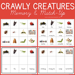 Crawly Creatures Memory and Match Up.png