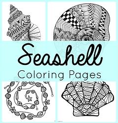 Seashell Coloring.png