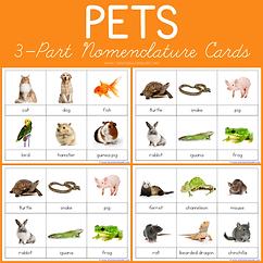 Pets 3 Part Nomenclature Cards.png