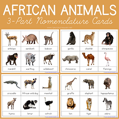 African Animals 3 Part Nomenclature Card