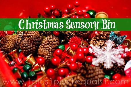 Christmas Sensory Bin.jpg