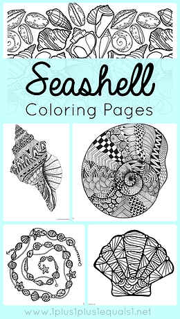Seashell Coloring Pages.png
