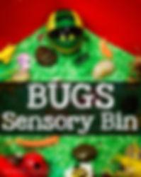 Bug Sensory Bin.jpg