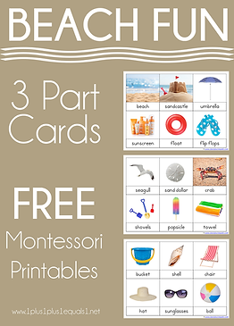 Beach Fun Montessori Printables Nomencla
