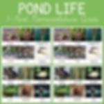 Pond Life 3 Part Nomenclature Cards.png