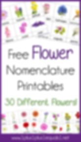 Flower Nomenclature Printables.jpg