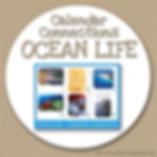 Calendar Connections OCEAN LIFE.png