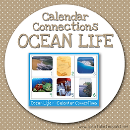 Calendar Connections OCEAN LIFE.png