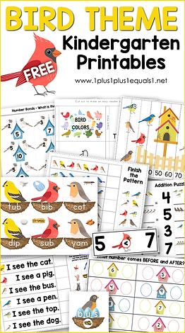 Bird Theme Kindergarten Printables.png