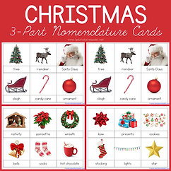 Christmas 3 Part Nomenclature Cards.png