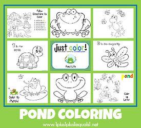 Pond Coloring.jpg