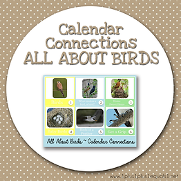 Calendar Connections ALL ABOUT BIRDS.png