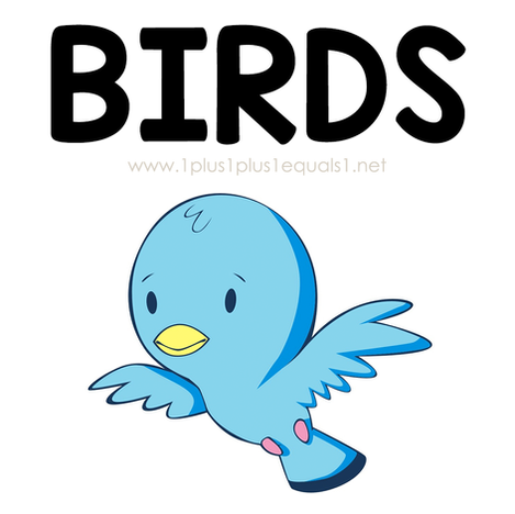 Bird Theme Printables and Ideas