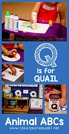 Q is for Quail Animal ABCs.png