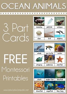 Ocean Animals Montessori Printables Nome