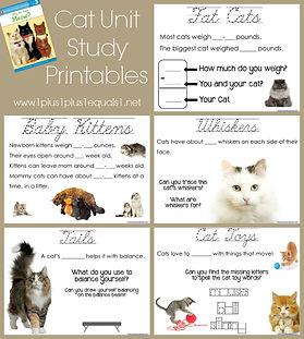Cat Unit Study Printables.jpg