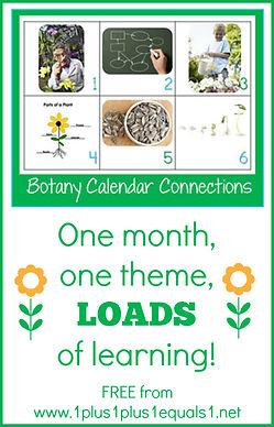 Botany-Theme-Calendar-Connections.jpg