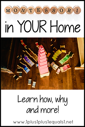 Montessori in Your Home.png