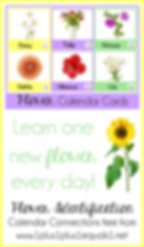 Flower Identification Calendar Connectio