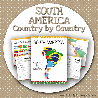 GROUP USE: SOUTH AMERICA Country by Country