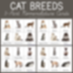 Cat Breeds 3 Part Nomenclature Cards.png