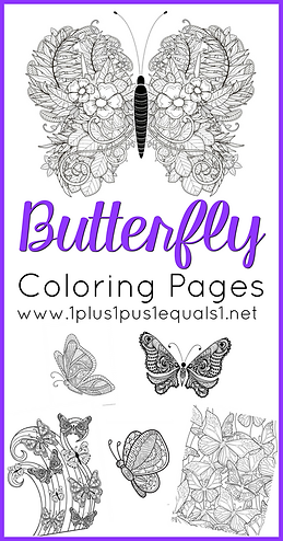 Butterfly Coloring Pages.png