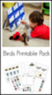 Birds Printable Pack.jpg