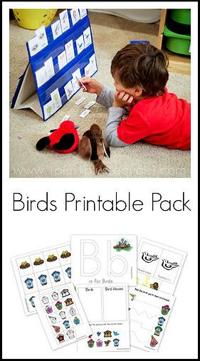 Birds Printable Pack.jpg