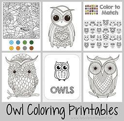Owl Coloring Printables.jpg