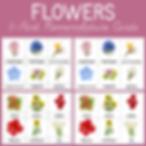 Flowers 3 Part Nomenclature Cards.png
