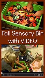 Fall Sensory Bin.jpg