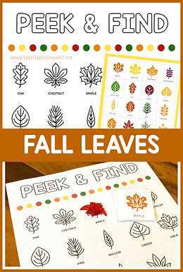 Peek and Find Fall leaves.png