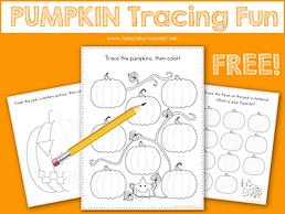 Pumpkin Tracing Fun.png