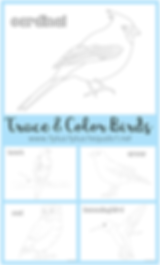 Trace and Color Birds Printables.png
