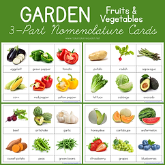 Garden Fruits and Vegetables 3 Part Nome