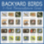 Backyard Birds 3 Part Nomenclature Cards