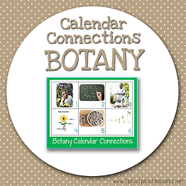 Calendar Connections BOTANY.png