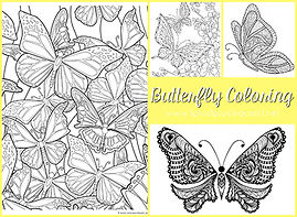 Butterfly Coloring s.jpg