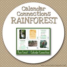 Calendar Connections RAINFOREST.png