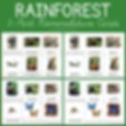 Rainforest 3 Part Nomenclature Cards.png