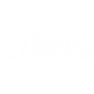 bb-logo-transparent square.png