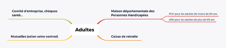 Carte mentale Adultes.png