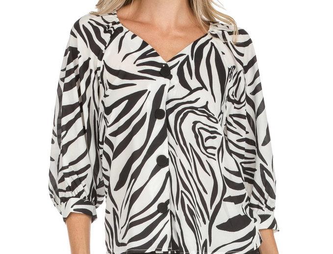 51A9620 • Zebra