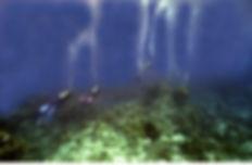Cozumel_Divers_drifting.JPG