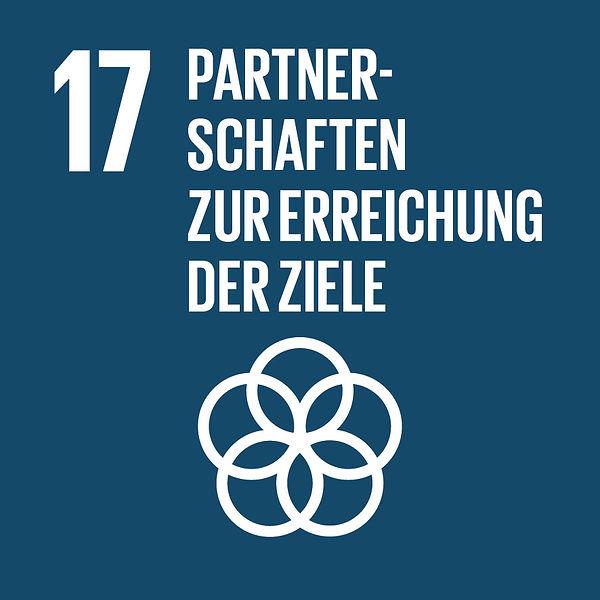 SDG-icon-DE-17.jpg