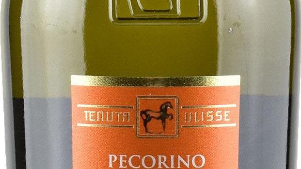 Tenuta Ulisse - Pecorino