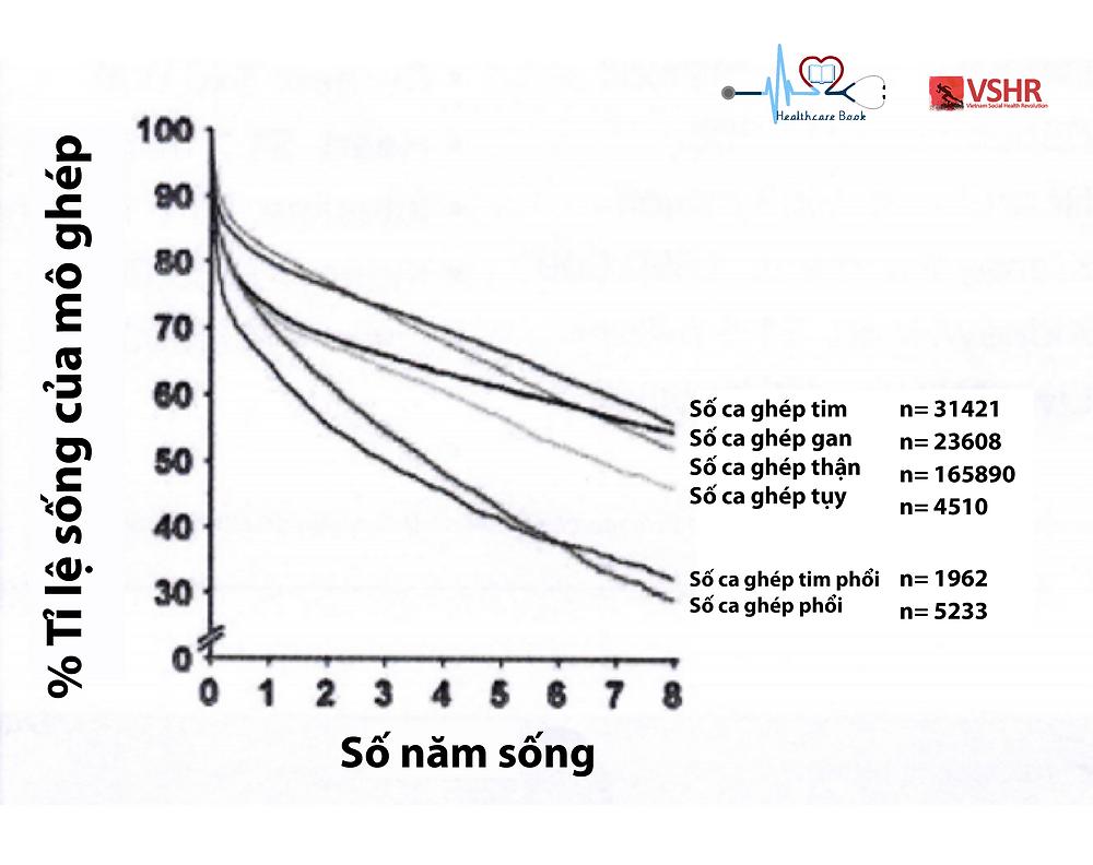 Tỉ lệ sống của mô ghép sau khi thực hiện phẫu thuật ghép tạng