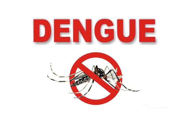 Hãy phòng dengue bằng cách phòng muỗi cắn.