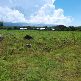 Zamboanguita overlooking lot