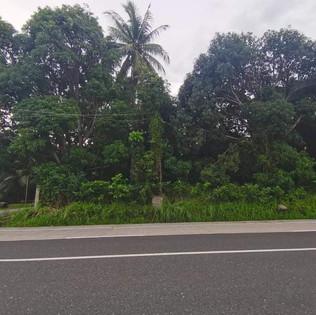 Dauin Negros Oriental